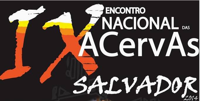 Relato do IX Encontro Nacional das ACervAs